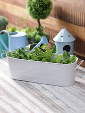 White Metal Hand Painted Oval Planter - By