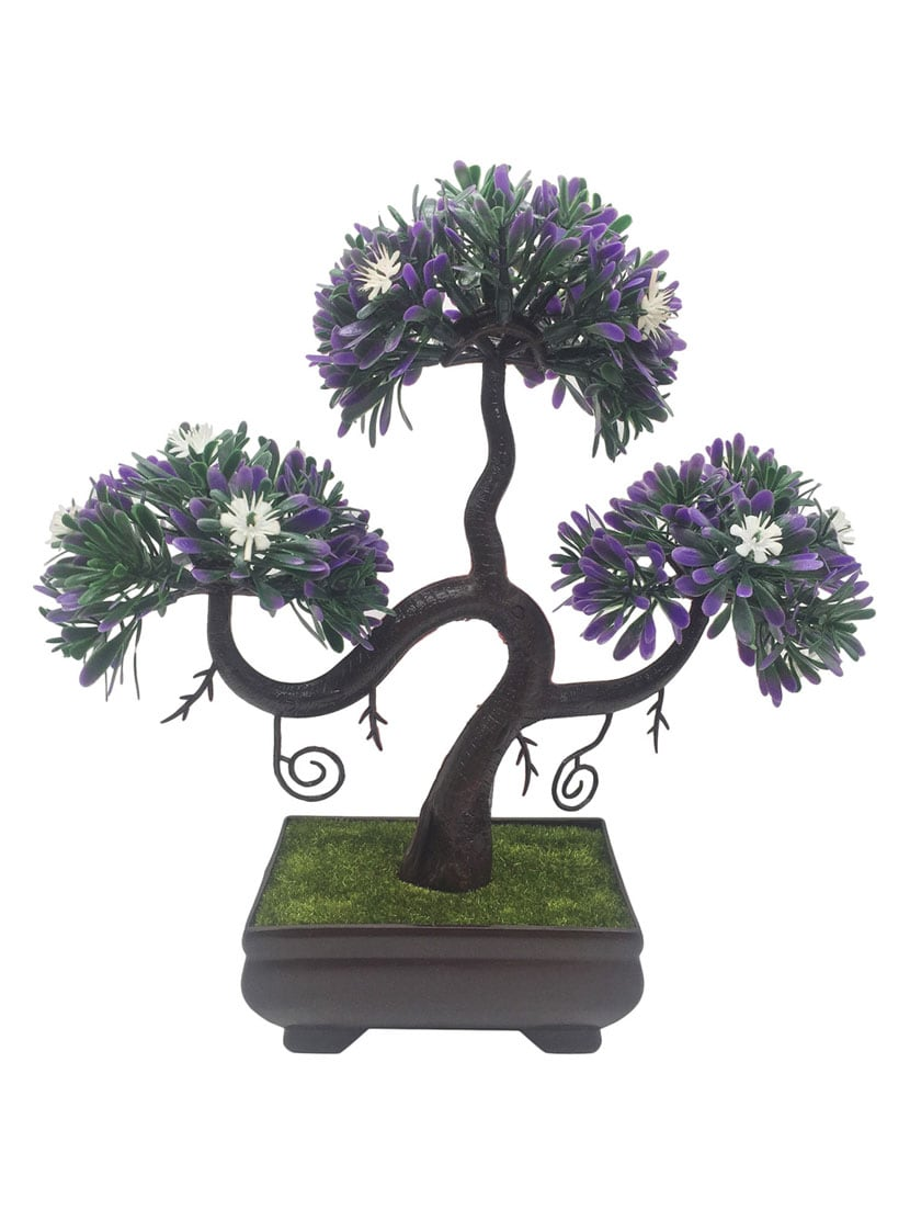 Buy Random S Shaped Bonsai Tree With Purple Leaves And White Flowers