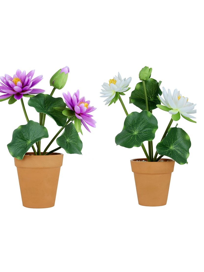 c17d7af31a6f0 ... Wonderland Lotus Flower pot in purple & white ( Set of 2) - 15440948 -