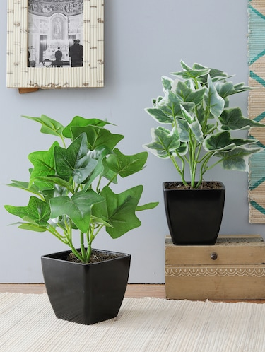 Buy Artificial Plants With Pot Combo Of 2 Plants For Home D ...