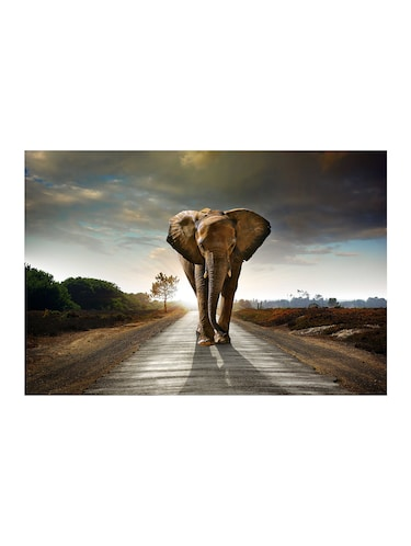 "Rawpockets""Elephant Wallpaper""Wall posters (PaperBoard,33cmX48cm) - 15732238 - Standard Image - 1"
