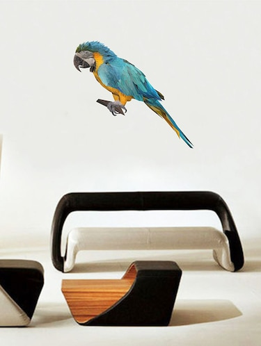 Rawpockets Wall Decals ' Multi Color Parrot Wall Sticker '  Wall stickers (PVC Vinyl) Multicolour - 15733654 - Standard Image - 1