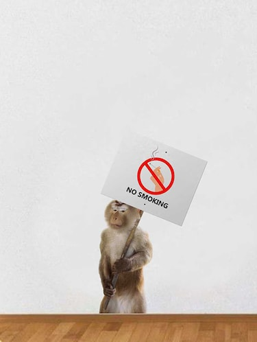 Rawpockets Wall Decals ' No Smoking  '  Wall stickers (PVC Vinyl) Multicolour - 15733912 - Standard Image - 1