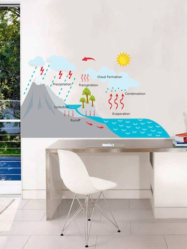 Rawpockets Wall Decals ' Rain Story for Learning - Kid's Room '  Wall stickers (PVC Vinyl) Multicolour - 15734063 - Standard Image - 1